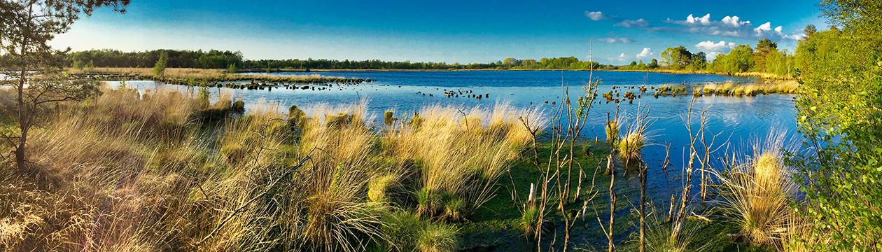 Frühling am Oldendorfer See (Foto: Helmut Bergmann)